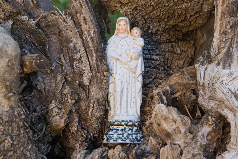 Maria im Baum